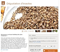 Team building : des insectes au menu de votre force de vente