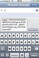 Message crypté avec Wabiz et prêt à l'envoi