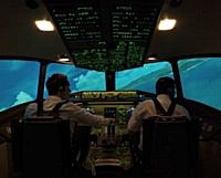 Le simulateur de vol est situé dans l'espace business de l'aéroport de Strasbourg.