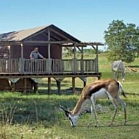 Le PAL, parc d'attractions auvergnat, accueille les séminaires d'entreprises dans l'univers de la savane.