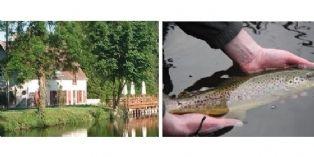 Connexion Nature fait pêcher les commerciaux