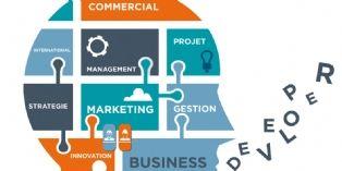 Qui sont les business developers ?