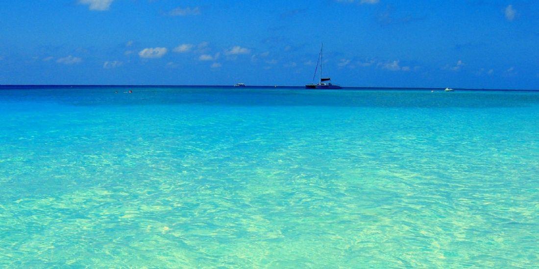 La leçon de l'océan bleu : voir avec les yeux des acheteurs potentiels